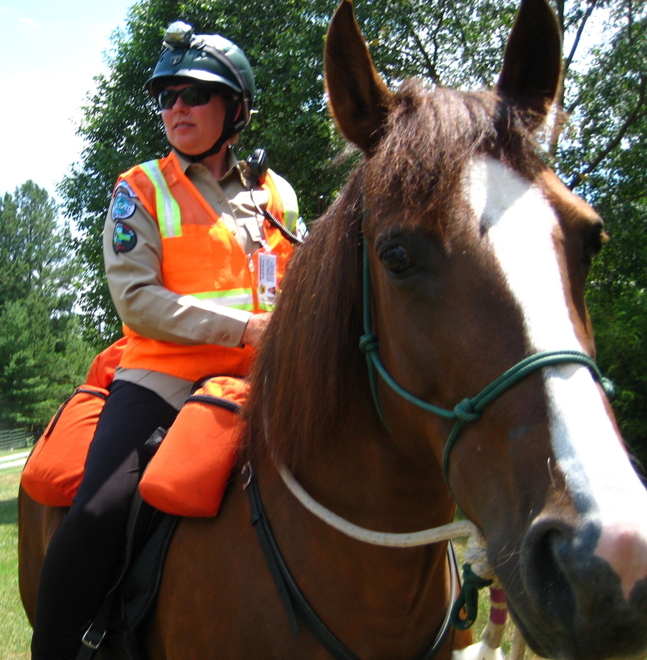 trotsar mounted search and rescue team  inc